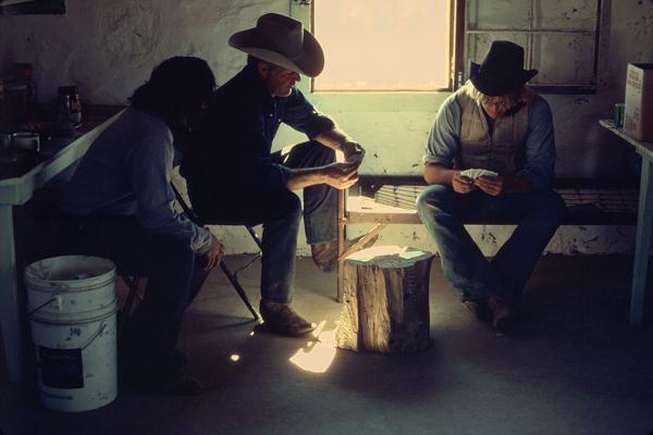 Des cowboys en pleine partie de poker